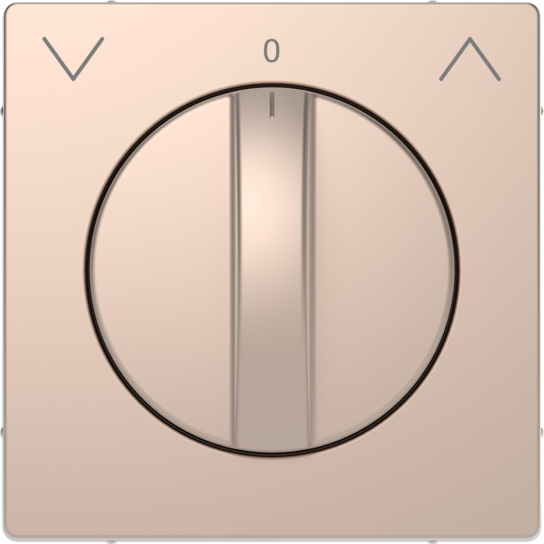 Schneider-Merten D Life centraalplaat voor draai-jaloezieschakelaar - champagne metallic (MTN3875-6051)