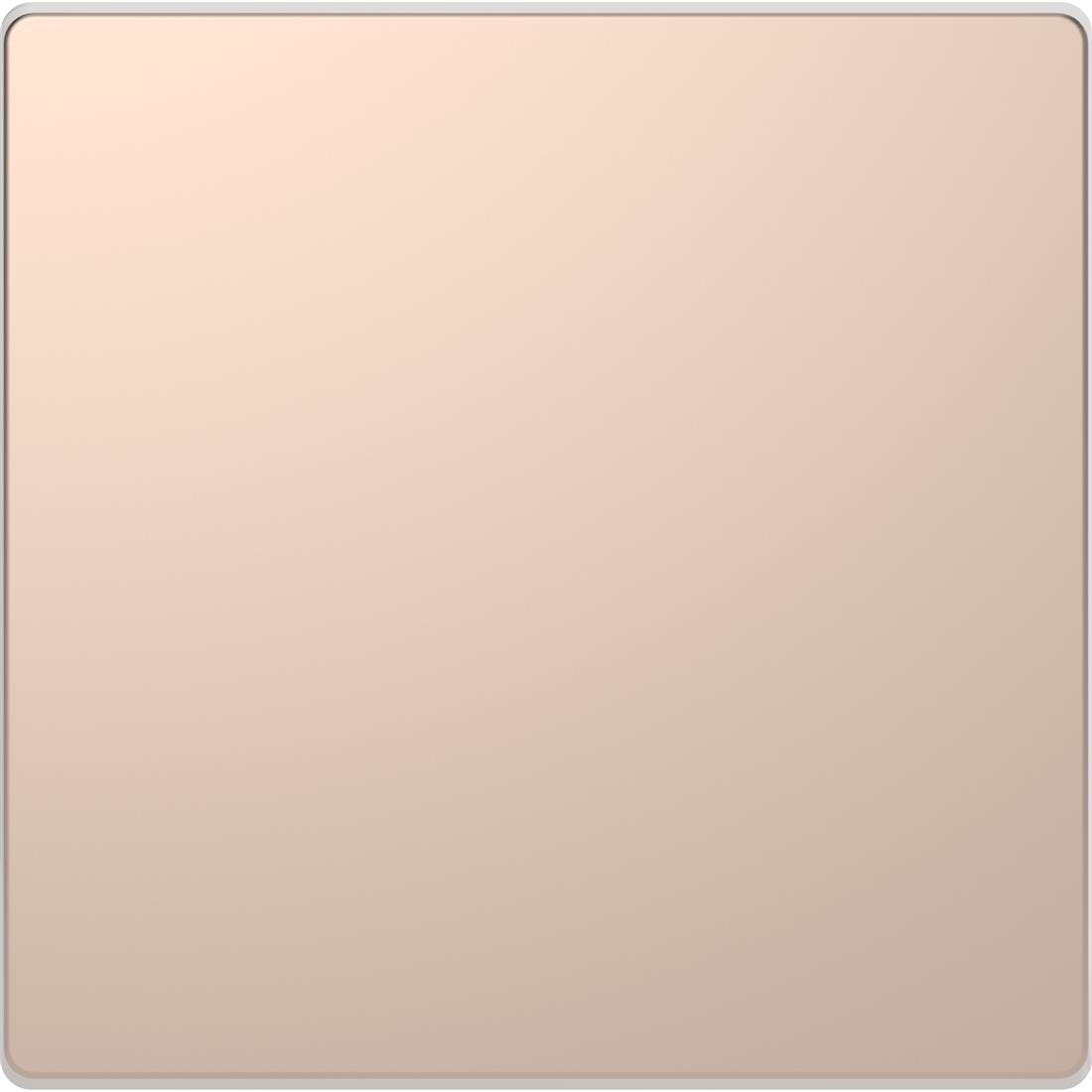 Schneider-Merten D Life blindplaat - champagne metallic (MTN4075-6051)