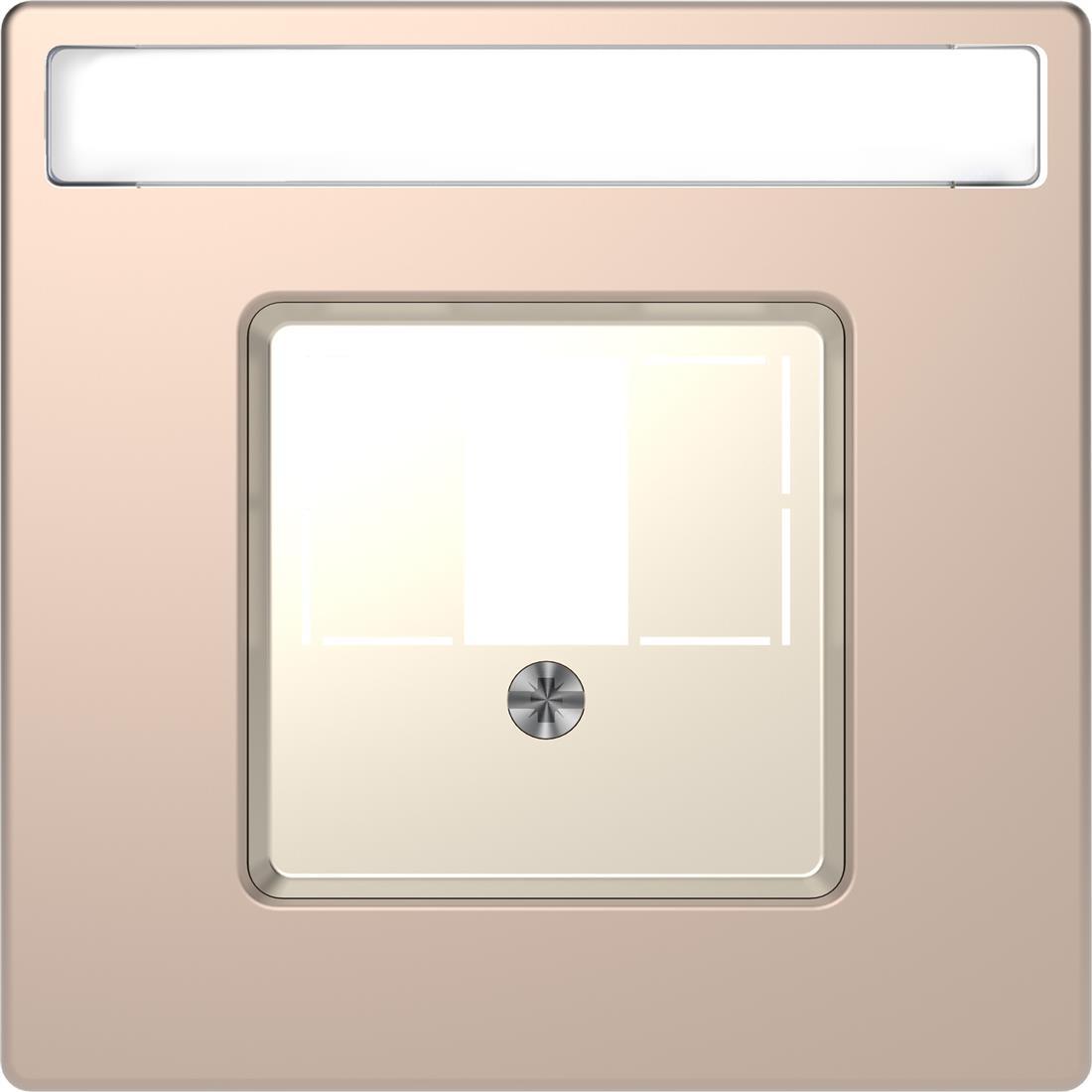 Schneider-Merten D Life centraalplaat VOOR USB/HDMI/VGA - champagne metallic (MTN4250-6051)