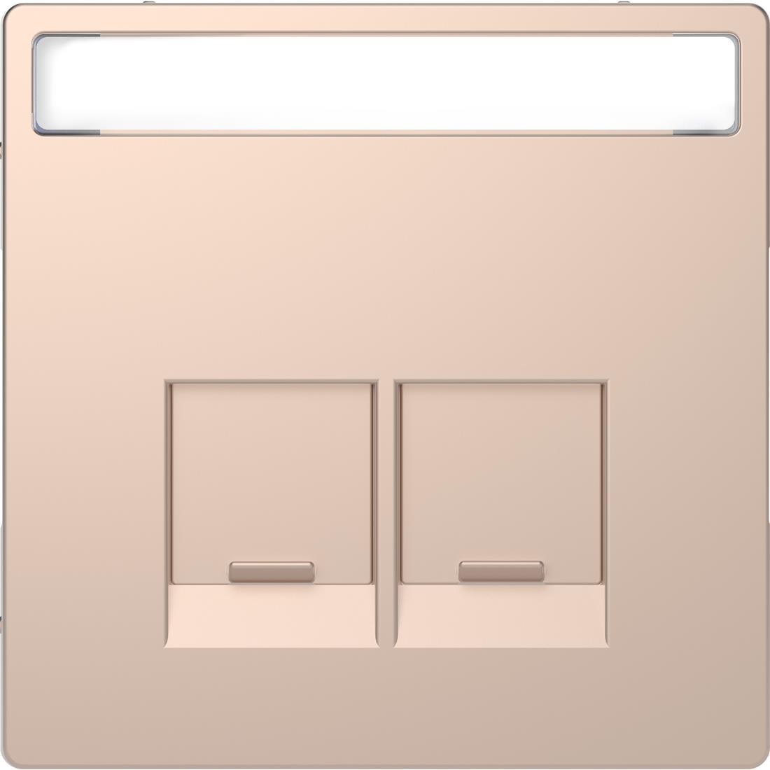 Schneider-Merten D Life centraalplaat 2-voudig met tekstvenster - champagne metallic (MTN4574-6051)